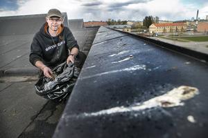 Fredrik Eriksson samlar ihop pinnar från taket som sedan läggs i säckar.