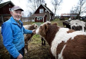 Sören Eriksson får nu lägga mer tid på sina tjurkalvar. Men snart väntar en höftledsoperation på lasarettet i Falun.