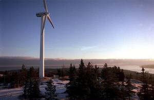 Såväl fasta boende i Näsåker som fritidsboende har tidigare hört av sig med kritiska synpunkter om vindkraftsbygget. Nu har bygdens lokala råd gjort detsamma.