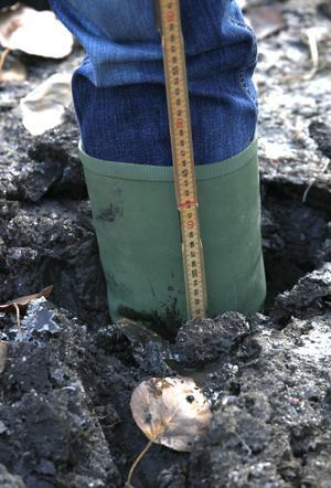 Muddermassorna bildar ett tjockt lager på fotbollsplanen vid Lillsjön, just här är djupet 35 centimeter.