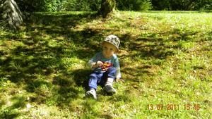 En varm sommardag i Arboretum  tog mitt barnbarn Love en liten paus i skuggan av de stora grönskande träden.