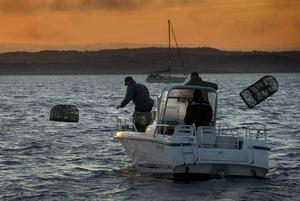 Hummerfiskare på västkusten har bland annat gestaltats i Camilla Läckbergs deckare.   Foto: BJÖRN LARSSON ROSVALL / TT