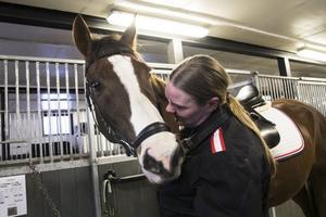 Mia Hed har ingen egen häst utan ser till att använda alla stallplatser till kunders hästar.
