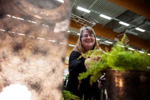 Camilla Börjes är trädgårdsmästare och driver Söderås trädgård i Rättvik. Hon ställer ut på mässan i Falun för andra året i rad med blommor, växter och inredning.
