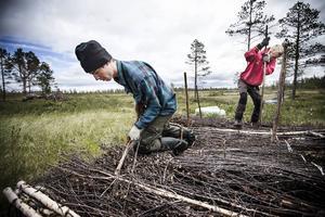 De är de första i världen att jobba med pluggar för att återställa våtmarker, använder man grävmaskin kan det göra större skada i naturen.