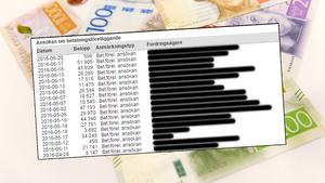 Många företag har lämnat in betalningsförelägganden mot Integria. Några av företagen har flera stycken förelägganden.