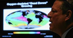 Den filmaktuelle klimatmissionären Al Gore är en hycklare menar många eftersom han själv flyger väldigt mycket.