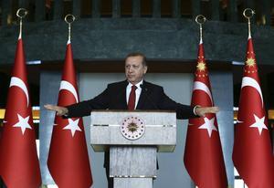 Under Erdogans styre har Turkiet blivit ett allt mer auktoritärt land. Foto: Kayhan Ozer/TT