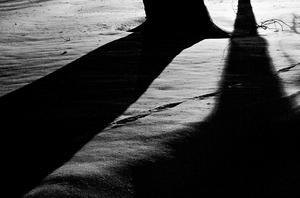 Denna svartvita bild är från Strömsholms slottspark. En gatlykta utanför parken ger dessa hotfulla skuggor som slår mot betraktaren. Bilden togs en kall vinternatt förra året, och ingår i ett fotoboksprojekt. Den finns också på fotoutställningen