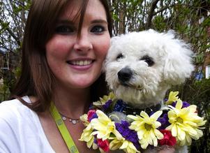 Familjelycka. Tack alla snälla läsare om röstade på mig, hälsar årets Vårvovve Henning, som med blomsterkrans gladdes åt segern tillsammans med sin stolta matte Maria Jäderholm.