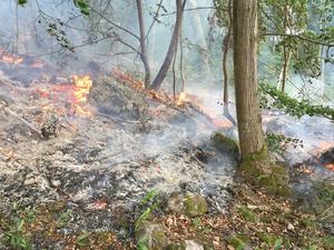 Det började brinna i terrängen på Farstuholmen i Mälaren på måndagskvällen.