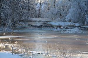 Vattnet brusar i Flaxnan trots kylan.