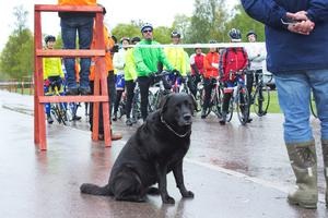 Ett fåtal var på plats och hejade i väg cyklisterna. Hunden Brus med husse var två av dem.