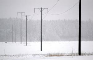 Om fem år ska det inte finnas några oisolerade ledningar i Borlänge energis elnät.