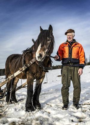 I 22 år har Sture Nilsson och nordsvensken Teja jobbat tillsammans, inte bara med timmerkörning i skogen. Teja har dessutom kört både bröllopsgäster och varit statist på filminspelningar.