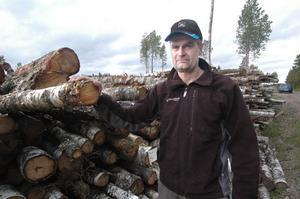 Ola Östergrens vid Mellanskog berättar att många skogsägare vid avverkningar själva behåller björken för att använda den till ved.