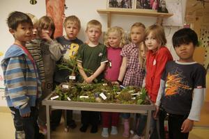 Elever i förskoleklassen gjorde en alldeles egen liten vårskog där många djur får plats – som älg, hackspett och gök och kråka