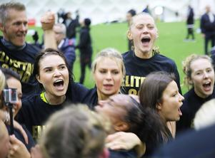 Den största stunden. En bild av total lycka när Ljusdal vann även den andra kvalmatchen mot Notviken och tog en historisk plats i Elitettan.