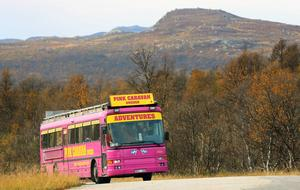 De rosa bussarna ser man sällan i Härjedalen. Men i helgen snurrade en sådan i västra delen av landskapet.