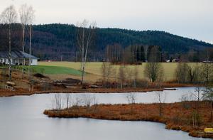 Naturskyddsföreningen vill slå vakt om åkermarken nordväst om Nässjön i Djurås, den mark som en politisk majoritet i Gagnef vill ianspråkta för bygget av ett nytt demensboende.