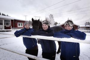 Caroline Holm, Emelie Mood och Hanna Edvinsson tillhörde alla tre Sverigetoppen när årets vinstrikaste lärlingar summerades. Hallsta Lotus håller koll på tjejerna i hagen.