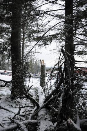 Stormen Ivar lämnade bakom sig en hel del trasigheter, arbetet med att städa upp i Östersunds skidanläggningar förväntas kosta mer än 1 miljon kronor.