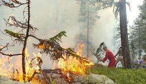 Här rasar branden i Djupa, Segersta.