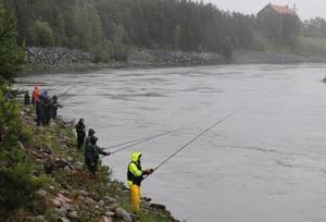 På de bästa fiskeplatserna kan det tyckas vara lite trångt.