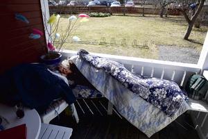 Lotta tillbringar flera kyliga nätter på Rias veranda. Det natthärbärge kommunen driver i Mjälga vill hon inte använda. Kommunen ska nu snabbutreda andra alternativa boendelösningar.