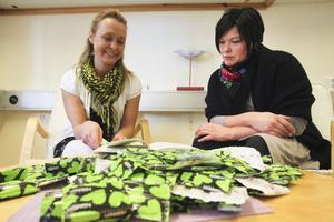 Astrid Lindh och Christin Hübenette är några av de som arbetar i Nordanstigs HIV/STI-grupp.