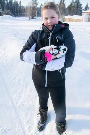 Tilde Ekman letade förgäves i fem dagar efter den fem månader unga kaninen Pricken. Men en onsdag tittade det välkända vita huvudet upp ur snön.