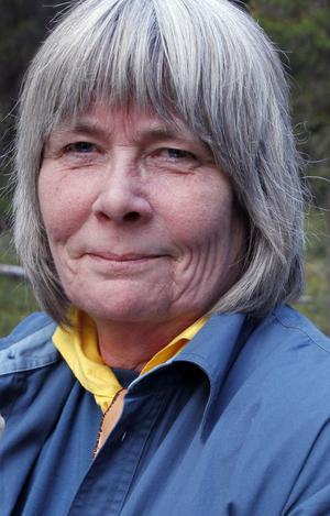 Anna-Karin Kavallin startade ett upprop till förmån för Ljusdals folkpark på nätsajten Facebook.