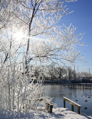 Även vinterid har vi många vackra platser utefter Mälarens stränder som nu även Västerås stad gjort ännu bättre.
