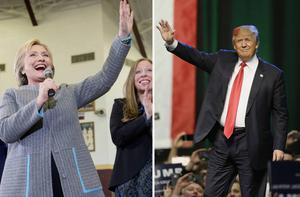 Hillary Clinton och Donald Trump är två välkända ansikten från den svenska valbevakningen. Men hur många känner till alla andra kandidater?