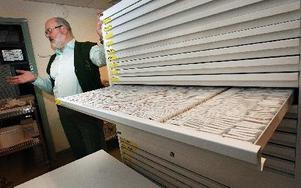 Tibor Tot i biobanken där uppskattningsvis flera miljoner cell- ocih vävnadsprover arkiveras sedan 60-talet. FOTO: STAFFAN BJÖRKLUND