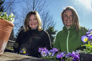 Carina Wilhelmsson och Signe Rask planterar penséer.