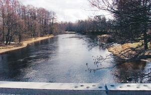 KLASSISKT VIMMASTÄLLE. Testeboån nedströms bron vid Avan. Här har det fångats många stora vimmor under årens lopp. År 2003 togs det också en stäm på över 3 hekto som räckte till seger i A-Fisket öppna klassen.