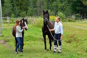 Hästliv. Både Hanna Gustafsson, till vänster, med sin Bellis och Lina Hagström med Oxford Street väljer bort semesterresor och är hellre med sina hästar på Nyhammarn.