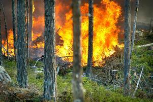 I helgen bekämpade brandmän närmare tio skogsbränder runt om i Jämtlands län.