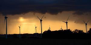 Föreningen Svenskt Landskapsskydd befarar att vindkraften släpps bortom all kontroll om oppositionen vinner valet i höst.