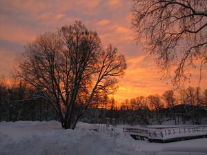 Morgonsolen färgade himmlen vackert den 23:e Januari