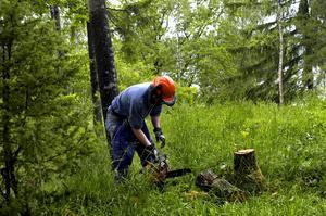 Av stor betydelse. Tas arbetstagardefinitionen bort skulle våra medlemmar få betydligt försämrade villkor och mer otrygga anställningar, skriver Per-Olof Sjöö.foto: scanpix