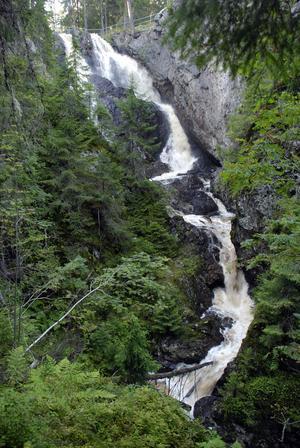 Vattnet faller över 30 meter ned i en stor kanjon.