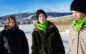 """Elina Moxell, Lugnvik, ska rida. """"Jag rider på Djur- och Kulgården i Torvalla. Det brukar jag göra, även under veckorna"""". Björn Nilsson, Lugnvik, åker till Svaningen. """"Jag sticker dit med kompisar och åker skoter. Jag ska nog till Bydalen också med familjen och åka skidor också"""". """"Jag ska åka till Strömsund med kompisar och åka skoter"""", säger Adam Sandberg, Kännåsen."""