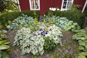 Monica och Karl-Erik har byggt trädgården