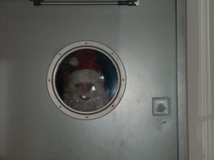 Jultomten tittar in !