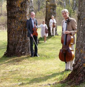 Capella Dolce består av Per-Anders Lundkvist, Ann-Marie Josefsson, Agneta Sonnebo och Mats Björk.