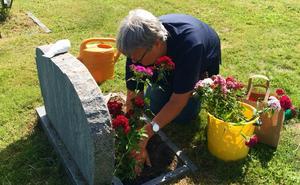 Margareta Nilsson planterar sin svärmors favoritblomma Borstnejlika.