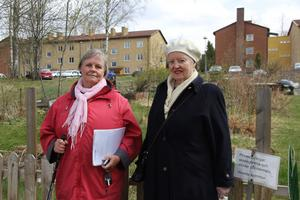 Mariana Eriksson och Kristina Magnusson arrenderar odlingslotter vid Jämtbovägen.