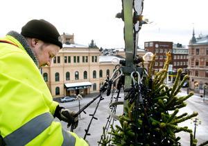 Foto: Mårten Englin.2016 års julgran när den placerades på Stora torget i Sundsvall.
